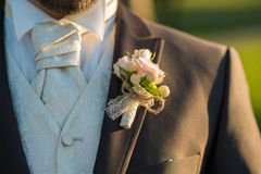 Young groom closeup portrait in nature Royalty Free Stock Image
