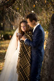 Young groom giving bride cup of tea at autumn park Royalty Free Stock Photo