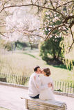 Young groom kissing the bride sitting back on bunch with background of blooming trees Stock Image