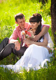 Young groom presenting flower to bride under tree at park Stock Photos