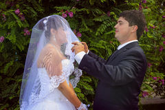 Young groom takes of his bride`s veil Royalty Free Stock Photos