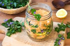Young ground-ivy leaves and flowers in a glass jar Royalty Free Stock Photography