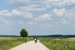 Young group riding bicycles by dirty road in countryside,group cyclists on a way between trees,young cyclists touring in Lithuania Stock Image