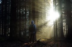 Young guy with a backpack standing in a forest in the mist at sunrise Stock Photos