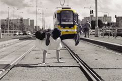 Young guy dancing breakdance on tramlines in the city Royalty Free Stock Photos