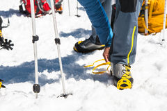 A young guy hiker dresses climbing Crampons over mountaineering shoes For walking through Glacier. A young guy hiker dresses climbing Crampons over Royalty Free Stock Photo