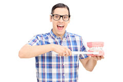 Young guy holding a denture and toothbrush Stock Images