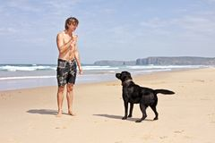 Young guy playing with his dog. At the beach Stock Images