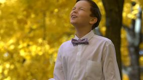 Young guy playing the violin in the autumn park stock video footage