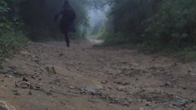 Young guy in raincoat jogging on wood trail during travel. Hiking man with backpack running in tropical wet forest. Male stock footage