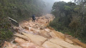 Young guy in raincoat jumping and jogging on rocky trail during travel. Hiking man with backpack running in stone ground. In wet forest. Male tourist going on stock video footage