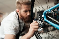 A young guy repairs a bicycle. Stock Images