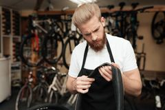 A young guy repairs a bicycle. Stock Photography