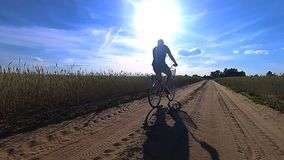 Young guy is riding on a bicycle in the middle of a field with a wheat in summertime stock video