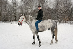 The young guy  sits on is light grey horse Royalty Free Stock Image