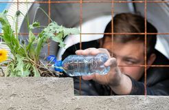 A young guy sitting in prison watering from a plastic bottle dandelion flower growing behind a rusty lattice on the loose. The royalty free stock image