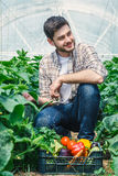 Young guy is sitting between rows of plants. Young guy is sitting between rows of plants while, working in a greenhouse Royalty Free Stock Image