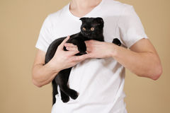Young guy in a white shirt holding a black Scottish fold cat on. An isolated background Royalty Free Stock Photography