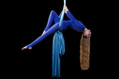 Young gymnast training on aerial silk. Young gymnast training balance on aerial silk Stock Photos