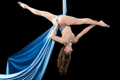 Young gymnast training on aerial silk. Young gymnast training flexibility on aerial silk Royalty Free Stock Photo