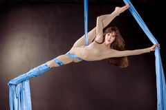 Young gymnast training on aerial silk. Young gymnast training flexibility on aerial silk Stock Image