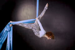 Young gymnast training on aerial silk. Young gymnast girl training balance on aerial silk Royalty Free Stock Photos