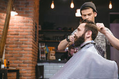 Young hairstylist making men's haircut to a bearded male Stock Photos
