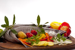 Young hake prepared for cooking with vegetables. European hake (Merluccius merluccius) being prepared for poaching, in white wine, in the oven on a bed of red Royalty Free Stock Images