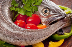 Young hake prepared for cooking with vegetables. Stock Image