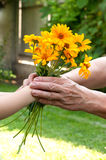 Young hand giving a flowers to seniors hand Stock Photography