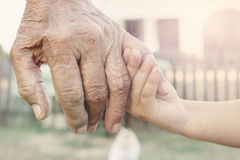 Young hand holding grandparent Royalty Free Stock Images