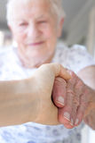 Young hand holding senior lady Royalty Free Stock Image