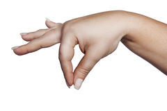Young Hand Holding Something Royalty Free Stock Image