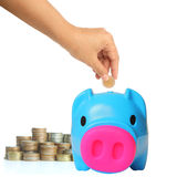 Young hand putting money into saving pig Royalty Free Stock Photos