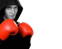 Young handsome boxer Royalty Free Stock Photography