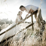 Young handsome bridal couple kissing through the long grass Royalty Free Stock Image