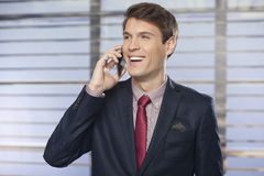 Young handsome businessman talking on the cell phone Royalty Free Stock Photography