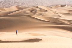 Young tourist in shorts hiking in giant dunes. Young handsome caucasian tourist in shorts and straq hat hiking in Liwa desert dunes. Abu Dhabi, UAE Stock Photos