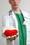 Young handsome doctor holding heart in hands Royalty Free Stock Photos