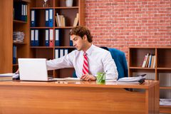 The young handsome employee sitting in the office royalty free stock image