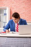 The young handsome employee working in the office royalty free stock photo