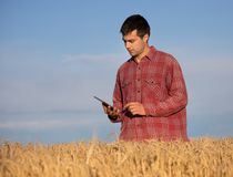 Farmer with tablet in golden wheat field Royalty Free Stock Images