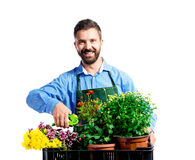 Young handsome gardener Royalty Free Stock Image