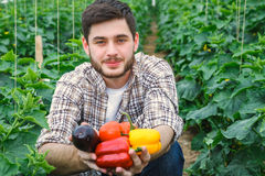 Young handsome guy is working in a greenhouse. Young handsome photogenic guy is sitting between rows of plants while working in a greenhouse Stock Photos