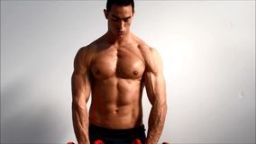 Young handsome male bodybuilder training shoulders with dumbbells. Against light background looking at camera stock footage
