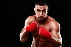 Young Handsome Male Boxer In Stance Stock Images