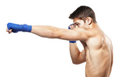 Young handsome male boxer Stock Photography