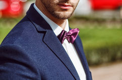 Young handsome man with a beard in luxurious white shirt and blue jacket with bowtie Stock Photos