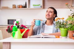 Young handsome man cultivating flowers at home. The young handsome man cultivating flowers at home stock image