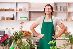 The young handsome man cultivating flowers at home. Young handsome man cultivating flowers at home royalty free stock image